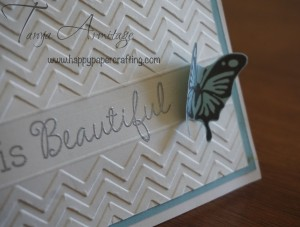 3d Butterfly on card